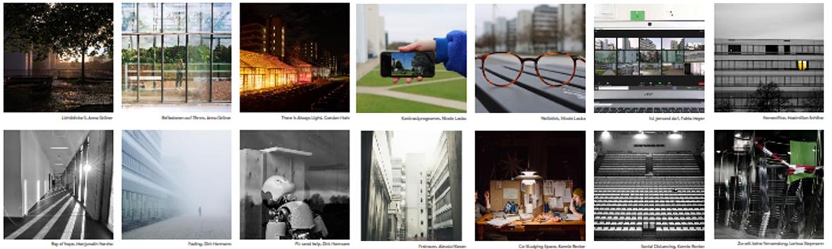 Collage Zoom-Foto-Wettbewerb