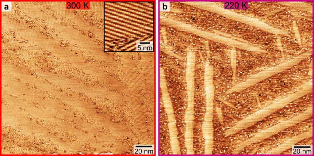 Aufnahmen mit dem Rastertunnelmikroskop zeigen, wie Molybdänacetat-Moleküle mobil werden: Bei 300 Kelvin (etwa 27 °C, links) sind die Moleküle geordnet, die Vergrößerung (kleiner Kasten) macht die Kettenstruktur sichtbar. Bei 220 Kelvin (etwa -53 °C, rechts) löst sich die Kettenstruktur teilweise auf und auf der Aufnahme sind ungeordnete, flockige Bereiche erkennbar.